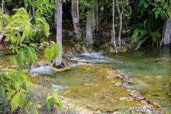 Natural brook Royalty Free Stock Photo