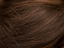 Natural Brown Hair Royalty Free Stock Photography