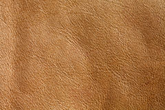 Natural brown leather textured pattern background. Macro view photo Stock Photos