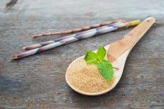 Natural brown sugar Royalty Free Stock Images