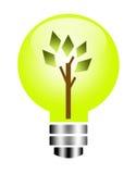 Natural bulb Royalty Free Stock Photos