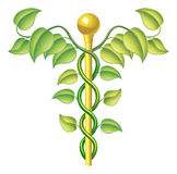 Natural caduceus concept Royalty Free Stock Images