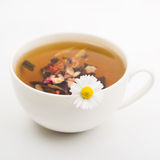 Natural camomile tea Stock Photo