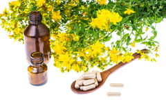 Natural capsules from St. John`s wort. Studio Photor Royalty Free Stock Image
