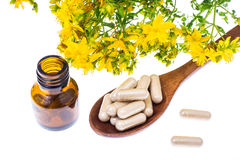 Natural capsules from St. John`s wort. Studio Photor Stock Photography