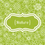 Natural card with beautiful flowers, beetles and Royalty Free Stock Photography