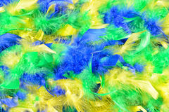 Natural carnival feathers boa Stock Images