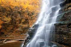 Natural cascade in the park Royalty Free Stock Photos