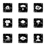 Natural cataclysm icons set, grunge style. Natural cataclysm icons set. Grunge illustration of 9 natural cataclysm vector icons for web Stock Photos