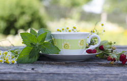 Natural chamomile tea royalty free stock images
