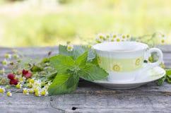 Natural chamomile tea royalty free stock image