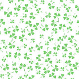 Natural Chamrock Texture. Clover Leaves Stock Image