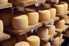 Natural cheese aging in the factory cellar Royalty Free Stock Photo