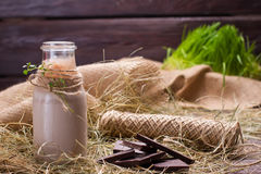 Natural chocolate milkshake with chocolate. Royalty Free Stock Image