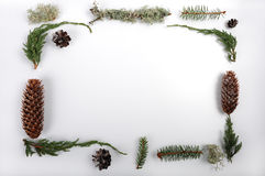 Natural Christmas Frame. Pinecones and spruce cones with glitter.  Juniper twigs, spruce twigs, and pieces of lichen.  Natural objects arranged to make a Royalty Free Stock Images