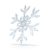 Natural Christmas snowflake Stock Photos