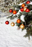 Natural Christmas Tree in Snow Stock Photography