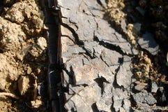 Natural coal Stock Photo