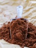 Natural cocoa powder (chocolate) in a  scoop Royalty Free Stock Photo