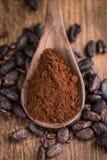 Natural Cocoa powder Stock Images
