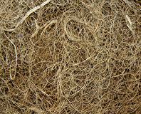 Natural coir background Royalty Free Stock Photo