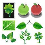 Natural collection Royalty Free Stock Photo
