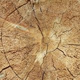 Natural Color Old Wood Grain Log Square Frame Texture Close-Up Royalty Free Stock Photos