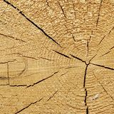 Natural Color Old Wood Grain Square Frame Texture Close Up Stock Photo
