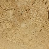 Natural Color Old Wood Grain Square Frame Texture Close Up Stock Photos