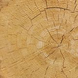 Natural Color Old Wood Grain Square Frame Texture Close Up Royalty Free Stock Photos