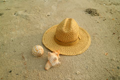 Natural color straw hat on the sand beach two types of beautiful natural seashells Stock Images
