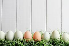 Natural Colored Easter in Grass Against Wood Background. Natural colored Easter eggs in grass against a white wooden background with room for copy space royalty free stock photography