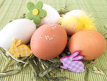 Natural colored eggs in easter nest Royalty Free Stock Images