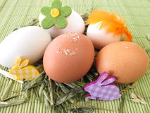 Natural colored eggs in easter nest Stock Photo