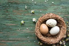 Natural colored spotted easter eggs Royalty Free Stock Photo