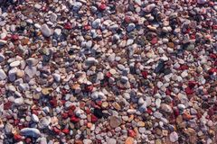 Natural colorful pebble in the water. Abstract background textur. E. Bright Sunny day Stock Photo