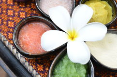 The natural colourful spa product Stock Photos