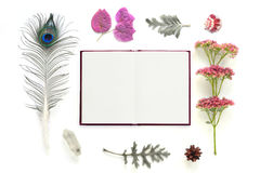 Natural composition with notebook on white background Stock Photography