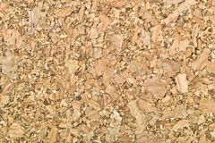 Natural cork. Background pattern texture Stock Image