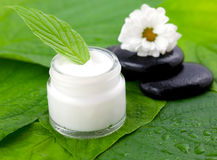 Natural cosmetic Royalty Free Stock Images