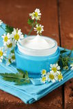 Natural cosmetic cream lotion with camomile Royalty Free Stock Image