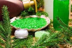 Natural cosmetic skin care products with firry branches Royalty Free Stock Photo