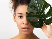 Natural Cosmetics. Afro Woman Holding Tropical Lea stock photos