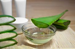 Natural cosmetics from aloe vera, cream, oils and everything for the skin. Still life of aloe royalty free stock images