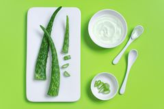 Natural cosmetics of aloe vera juice, fresh leaves of aloe. On bright green, top view royalty free stock image