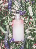 Natural cosmetics bottle with pastel pink essence, tonic, cleansing oil , emulsion or peeling on herbal leaves and wild flowers stock photo