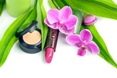 Natural cosmetics: concealer and lipstick royalty free stock photography