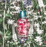 Natural cosmetics glass bottle with pink liquid: tonic , makeup fixing mist or perfume on herbal leaves and wild flowers. Background, copy space for your text stock photo