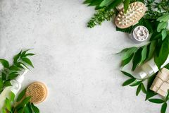 Natural skincare and leaves. Natural cosmetics and green leaves on white stone background, copy space. Natural organic skincare, bio research and healthy stock photos