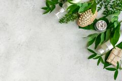 Natural skincare and leaves. Natural cosmetics and green leaves on white stone background, copy space. Natural organic skincare, bio research and healthy royalty free stock image